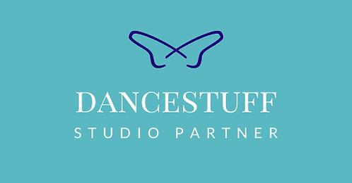 Studio Partner Website Logo.png