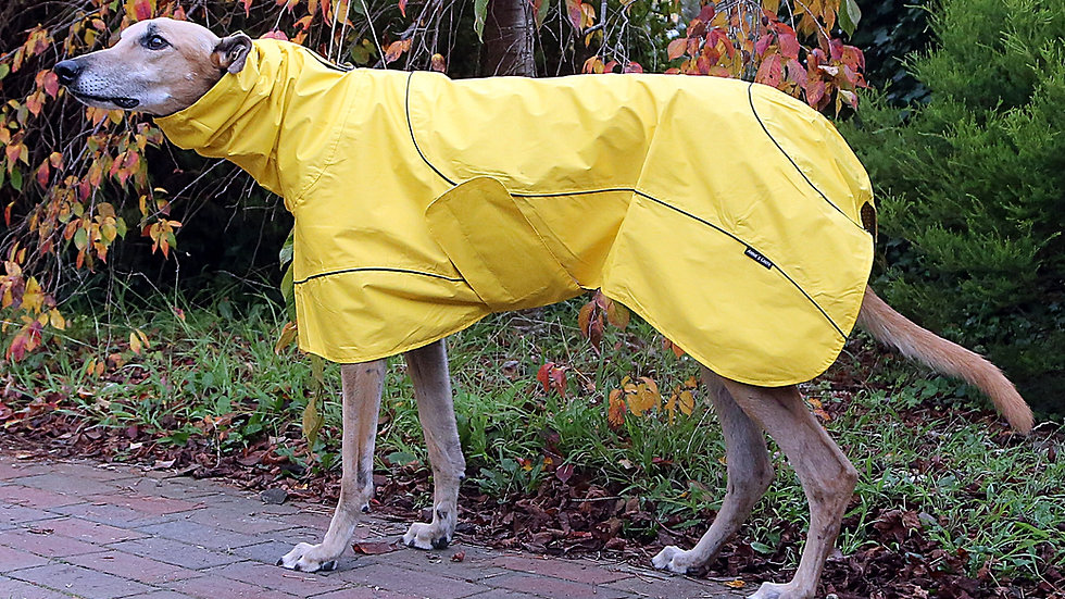 Hipster Raincoats