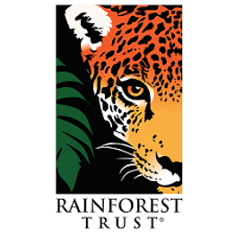 Support Conversation work throughout the world by donating to the Rainforest Trust