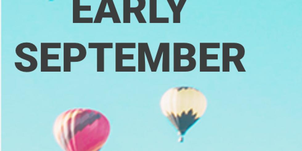 Cohort #2 - Innovation Transformation Programme - start early Sept