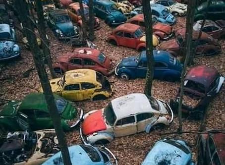 Saturday Writing Prompt - Car Graveyard - 6th June