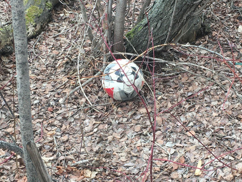 Saturday Writing Prompt -22nd May -The Lost Ball