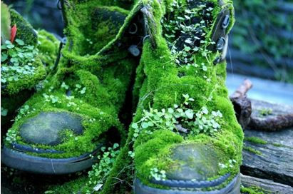 Saturday Writing Prompt - 18th April - Boots