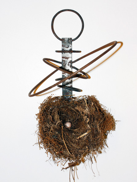 Hard Nest