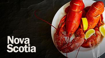 Guia_NovaScotia.jpg