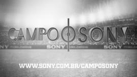 Campo Sony 2013