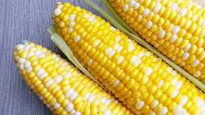Conheça os benefícios do milho para o nosso organismo