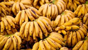 Conheça os benefícios da banana para a sua dieta