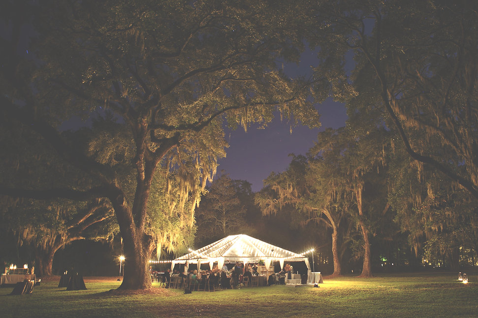 A summer evening with the trees surrounding a tent with beautiful lights on a manicured lawn.