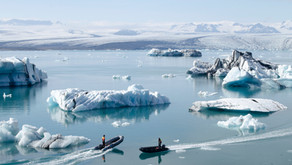 How Climate Change Is Affecting the Future and What You Can Do