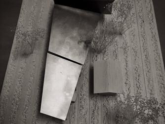 芦屋の戸建住宅の提案