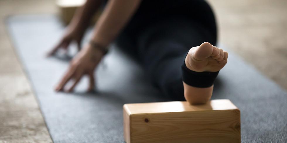 Yin Yoga Teacher Training - Form & Function: Anatomy & Poses