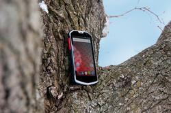 H450R in Tree