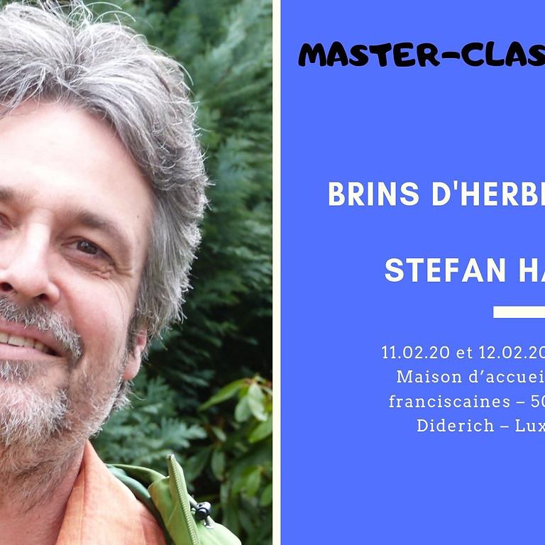 Master-Class : Brins d'herbe et Oasis - Stefan Hammel