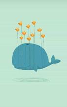 balena lieve
