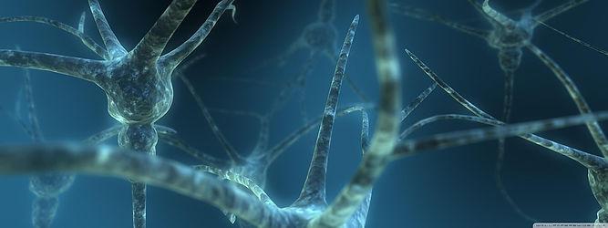 Neural-Network-Neural-Links-Neurons-Brain-3d-5966108.jpg