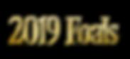 2019-Foals.png