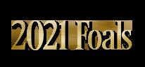 2021-Foals.png