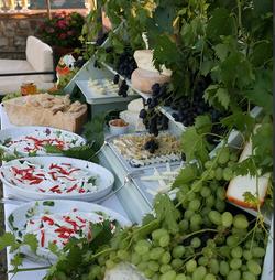 Tuscan Bites - Catering (5)