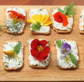 Tuscan Bites - Bartendering (24)