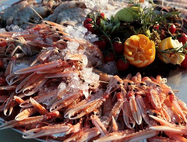 Tuscan Bites - Catering (1)