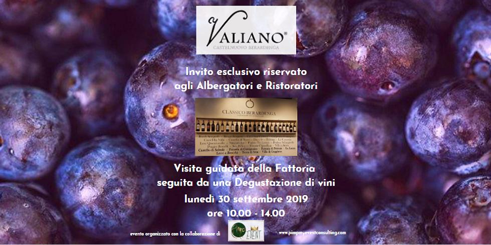 Degustazione di vini e Visita guidata alla Fattoria di Valiano