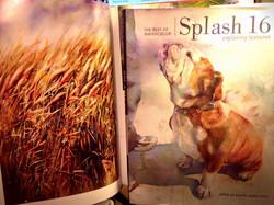Splash 16