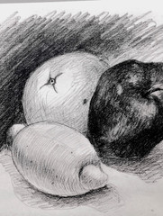 Fruit - A Pencil Drawing   生果鉛筆素描