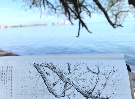 Beachpoint