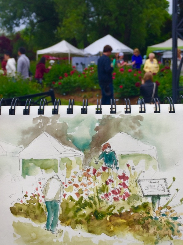 Peony Festival sketch on location