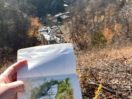 Albion Falls | 阿爾比恩瀑布