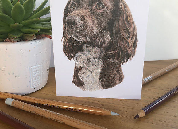 Liver Spaniel Greeting Card