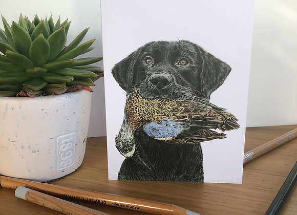 Dog & Duck Greeting Card