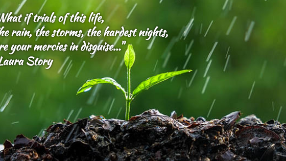 The Rain, The Storms, The Hardest Nights...