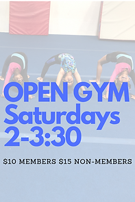 OPEN GYM Saturdays 2-3_30.png