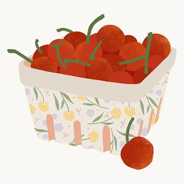 Cherry Basket Illustration