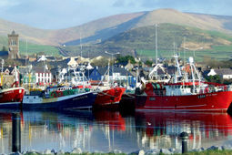 Southern-Peninsula_Dingle-Marina_Small.j