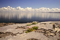 Cliff-Coast_The-Burren_Small.jpg
