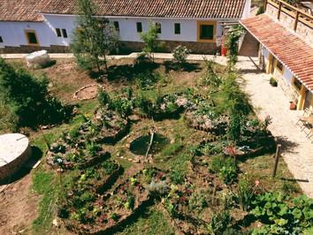 21 - Mandala Garden.jpg