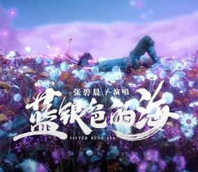 张碧晨 Diamond Zhang - 蓝银色的海
