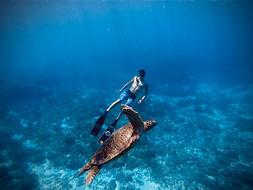 增加戶外運動的運動表現|自由潛水