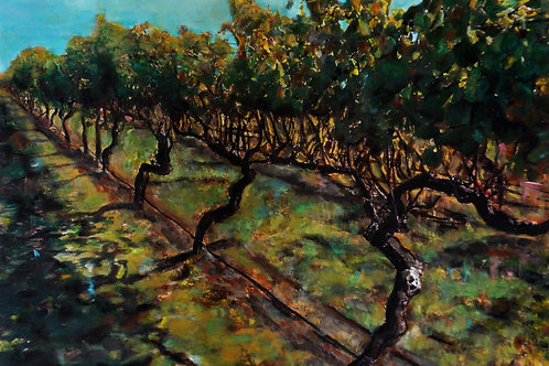 Walking in the winery