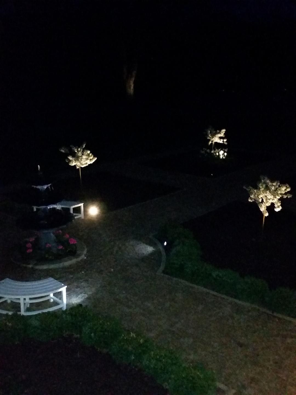 Gardens at nightime2