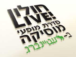 עיצוב לוגו לפסטיבל לרשת קהילה ופנאי חולון - מרכז שטיינברג
