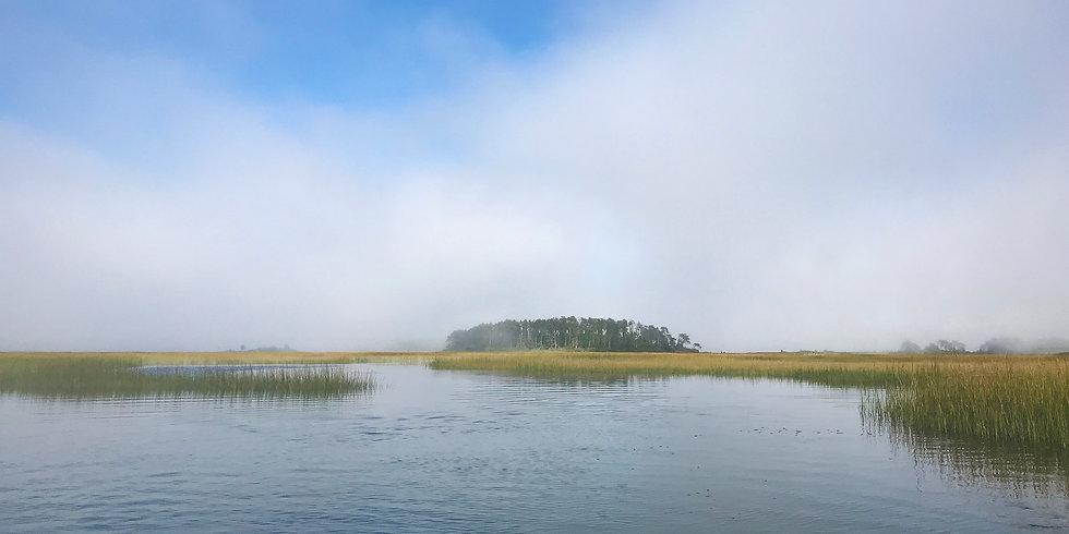 bkg-fog3000wx1500.jpg