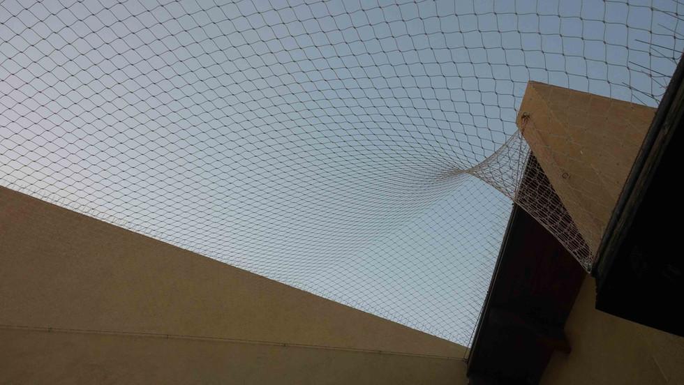 הרחקת יונים-גגות טכניים (33).jpg