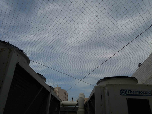 הרחקת יונים-גגות טכניים (13).jpg