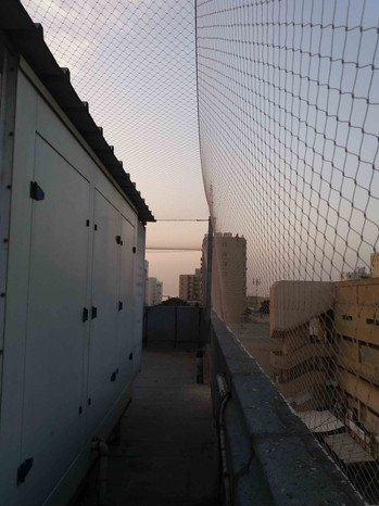 הרחקת יונים-גגות טכניים (17).jpg