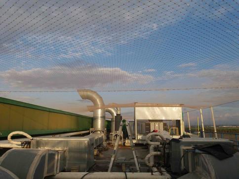 הרחקת יונים-גגות טכניים (11).jpg