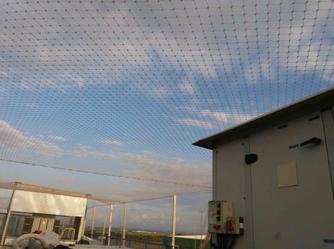 הרחקת יונים-גגות טכניים (12).jpg